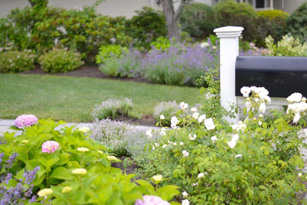 les-fleurs-home-gardening-flowers.jpg