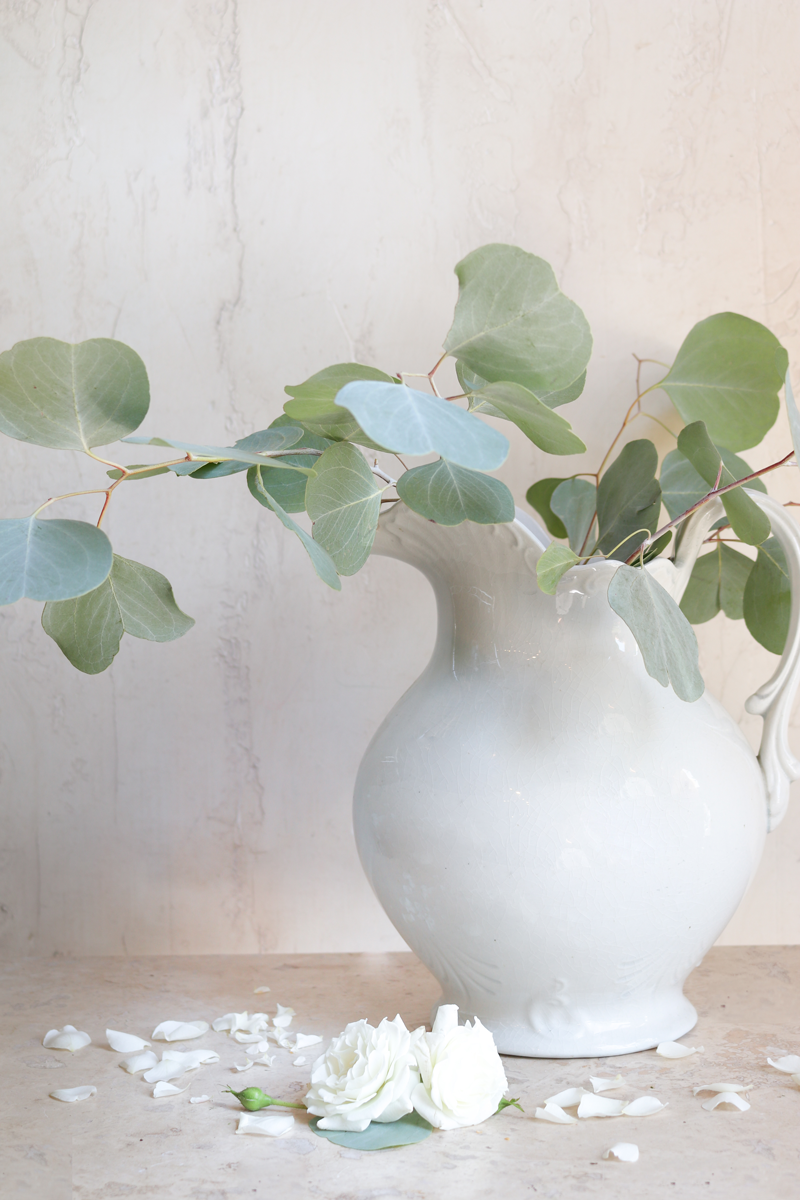les fleurs andover french ironstone pitcher eucalyptus leaves