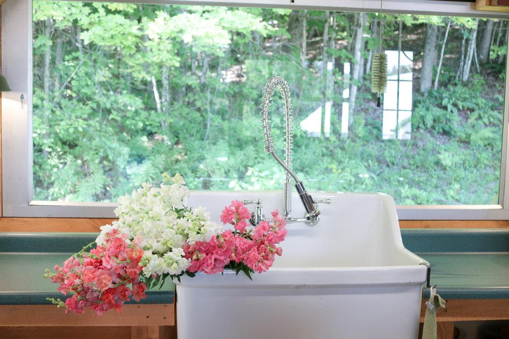 sandra-visits-maple-flower-farm-snapdragons.jpg