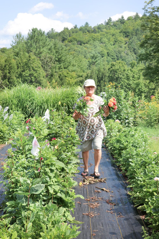 liz-krieg-maple-flower-farm.jpg