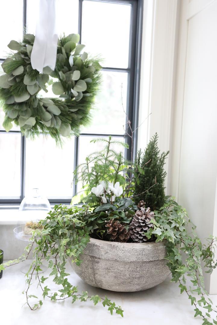 holiday planter ivy pince cone eucalyptus wreath les fleurs andover