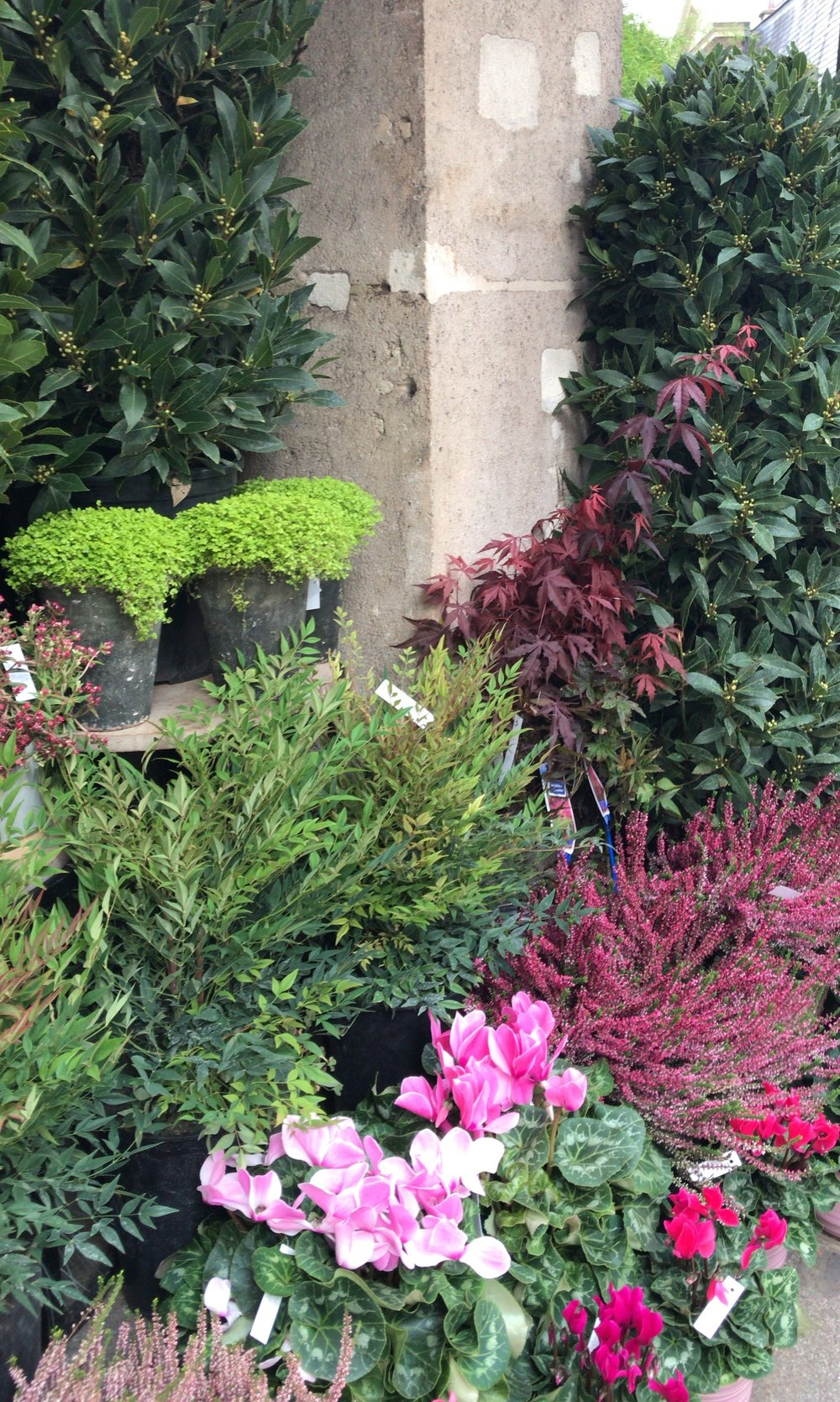 paris-flower-shop-outside.jpg