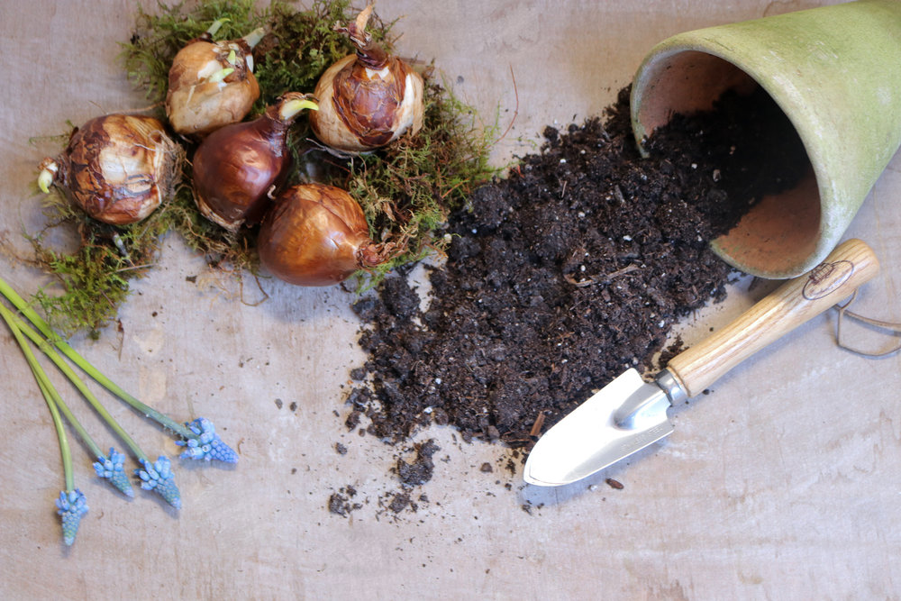 lesfleurs-garden-workshop-mar23 (5).jpg