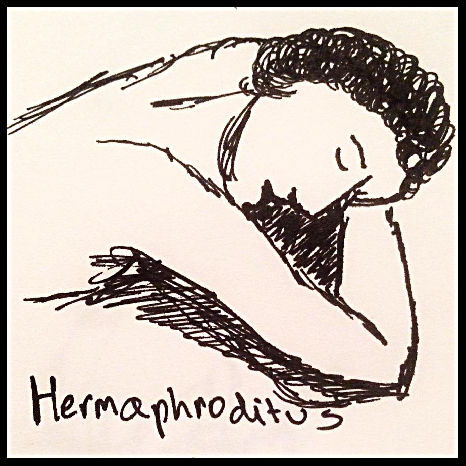 hermaphroditus.jpg
