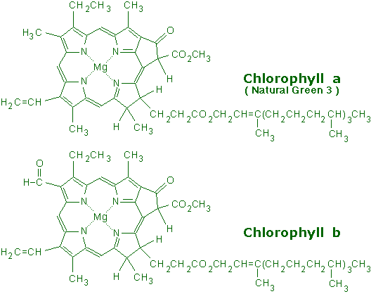 chlorophyll_a_b.png
