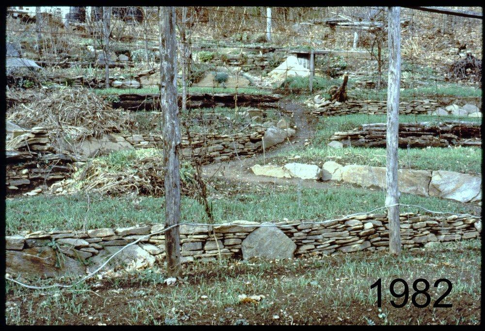 1982 rye terraces.jpg