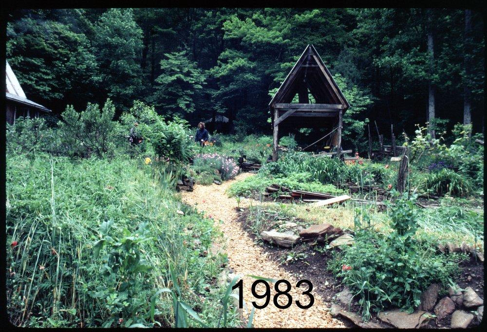 1983 lawn - shed.jpg
