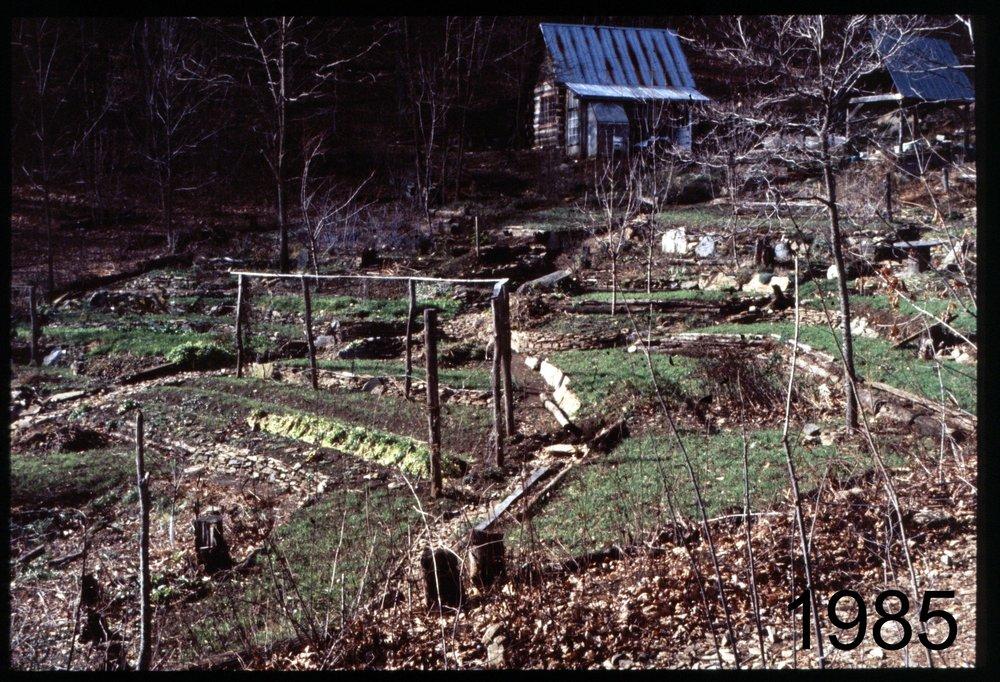 1985 house slope - cabin.jpg