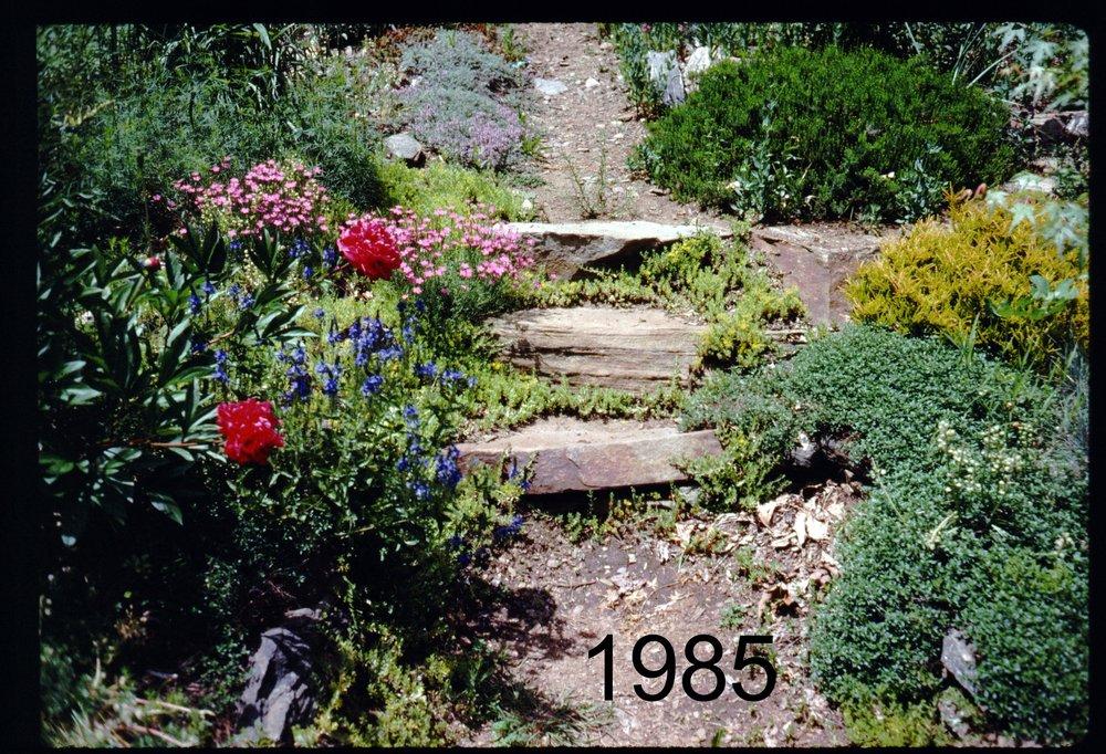 1985 uppergarden steps.jpg