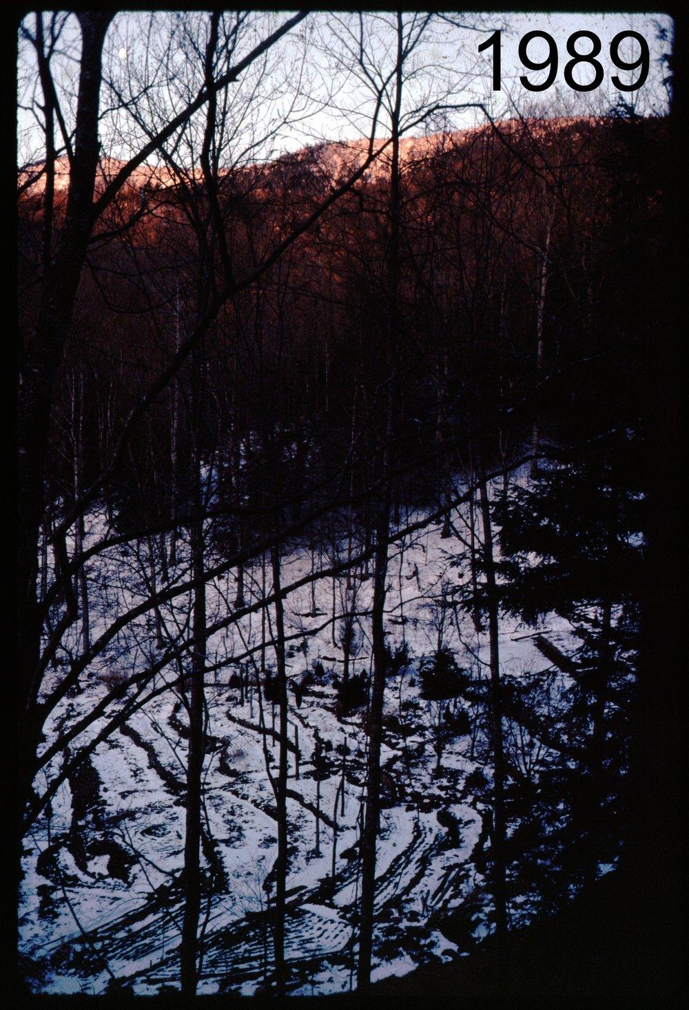 1989 house-Blacks snow.jpg