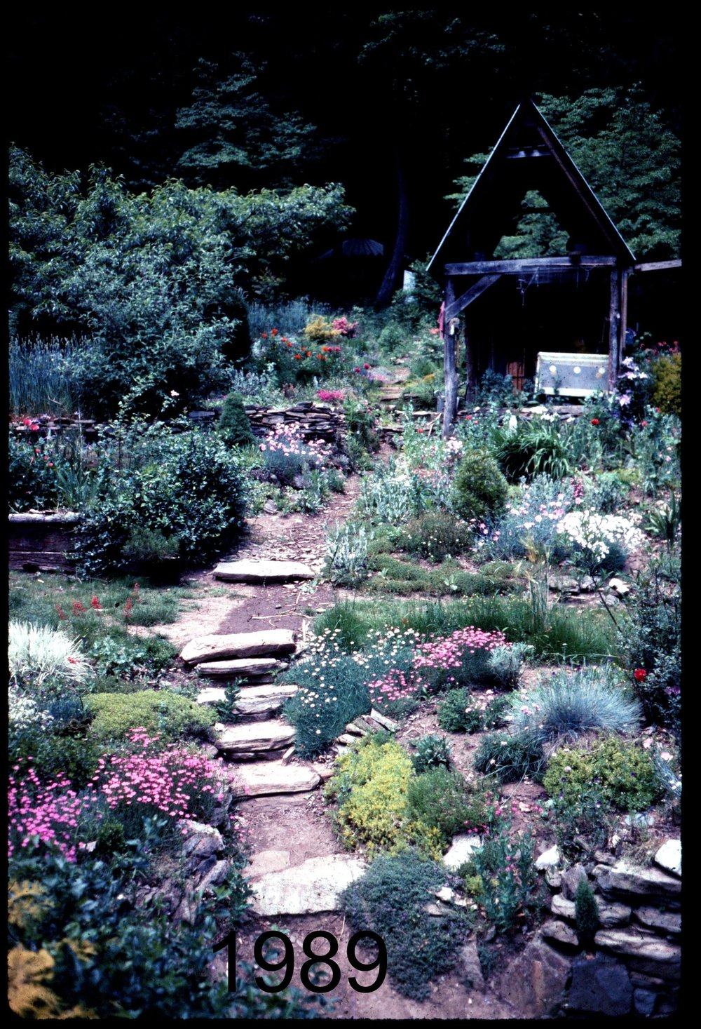 1989 overview shed path w flowers.jpg