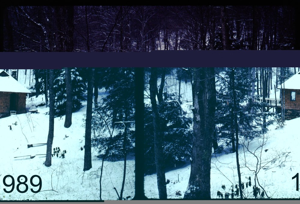 1989 view3 tramp - pavil in snow.jpg
