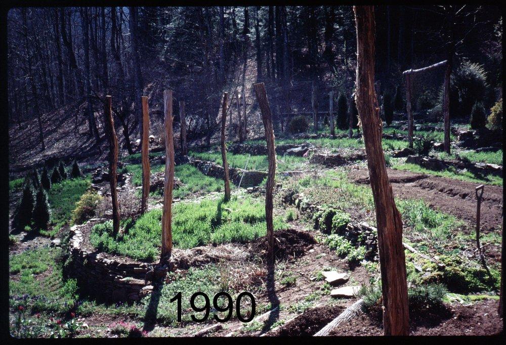1990 veggdn - west.jpg