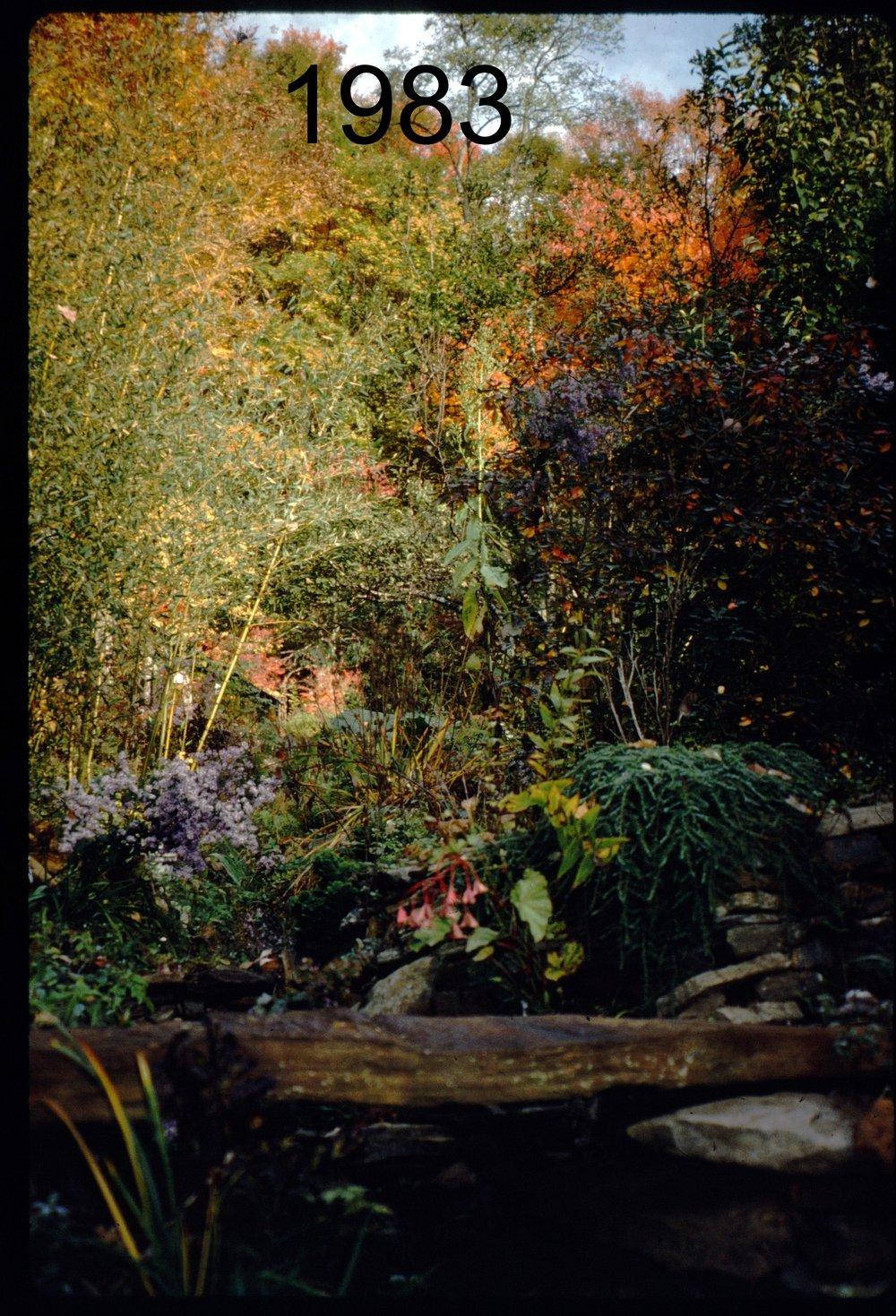 1993 stone bridge - N, autumn.jpg