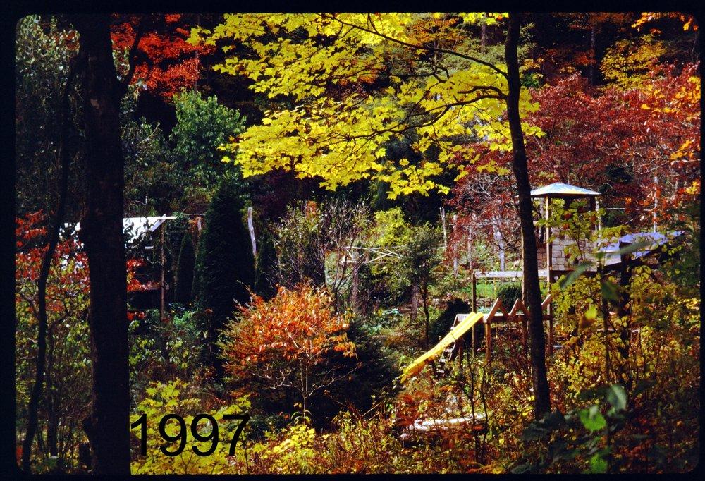 1997 drive - playhouse autumn.jpg