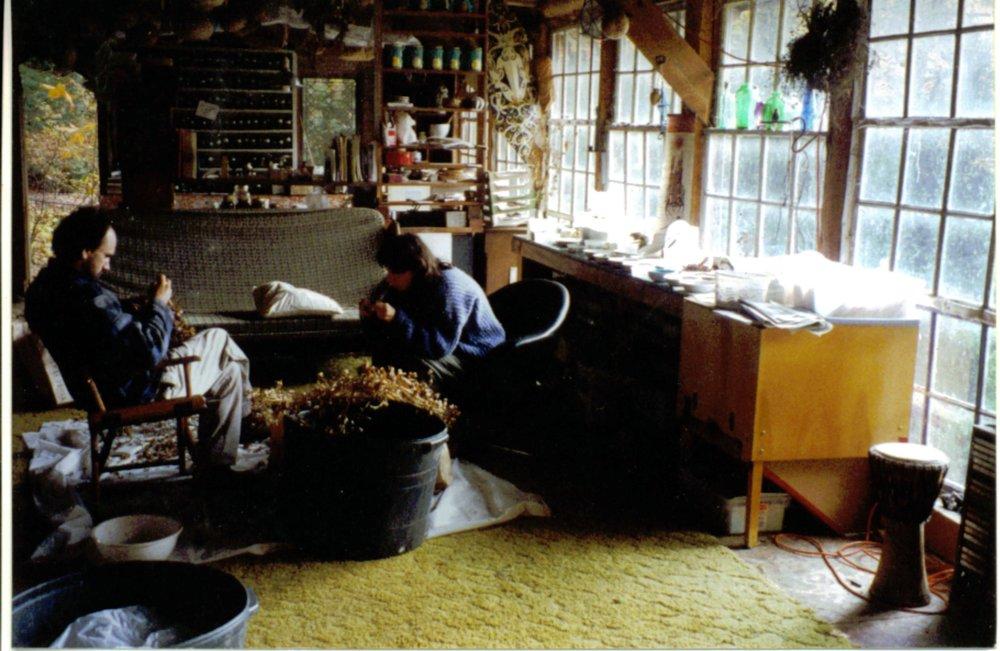 2000 cleaning herbs in pavil.JPG