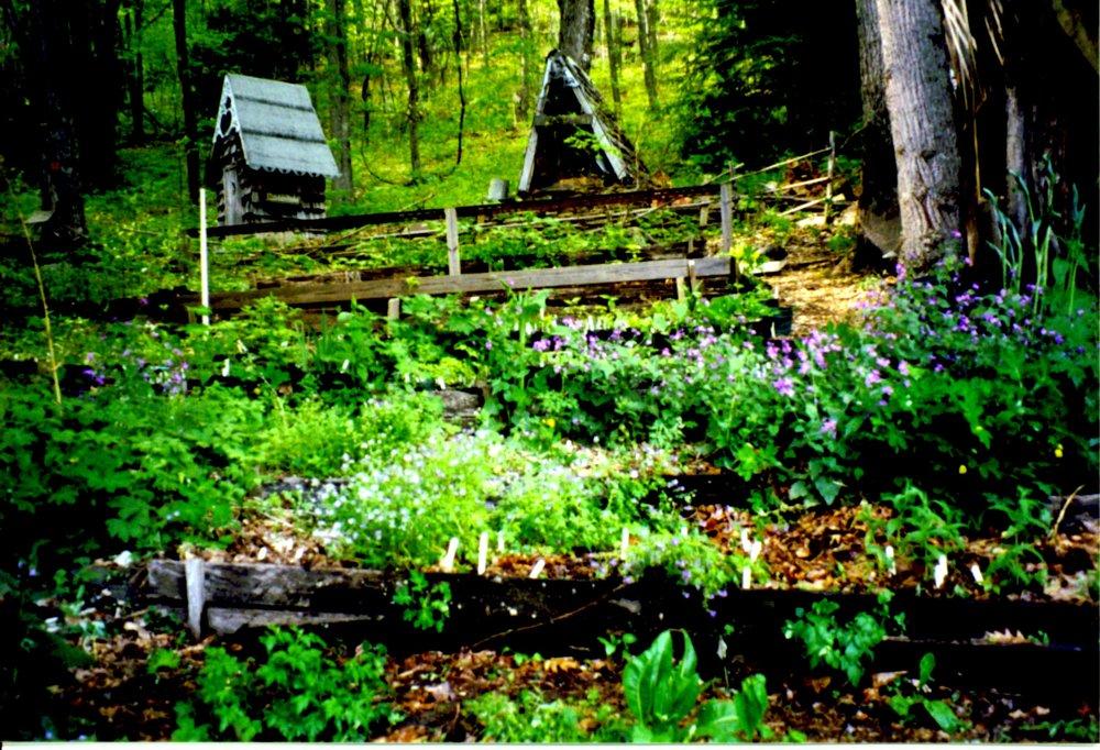 2001 shade nurs, outhouse.JPG