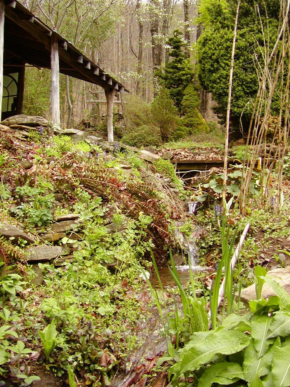 2003 stream by cabin.JPG