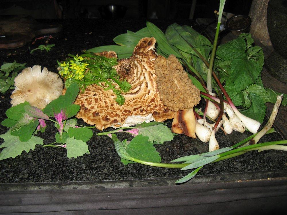 gourmet dinner2.jpg