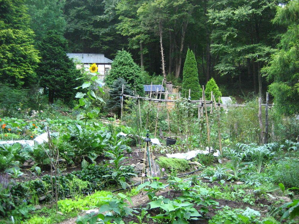 42-Garden-Sept.jpg