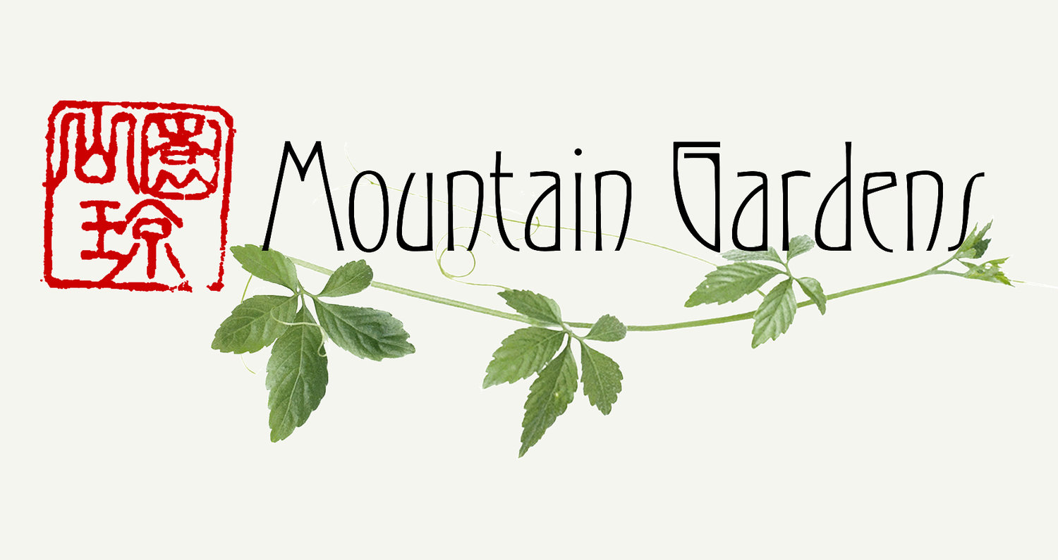 2013 Projects and Workshops — Mountain Gardens