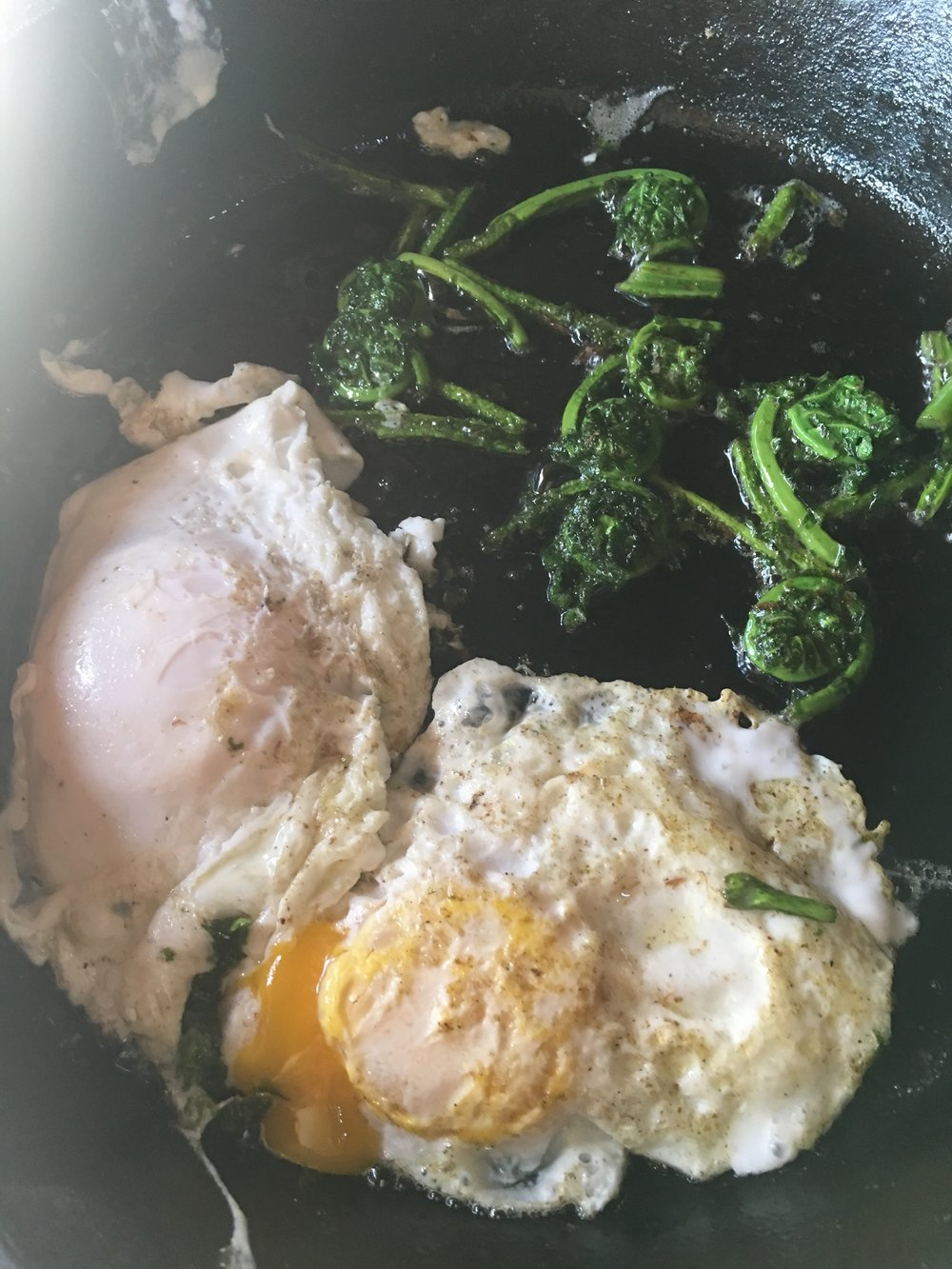 Frying the fiddleheads and eggs with butter.