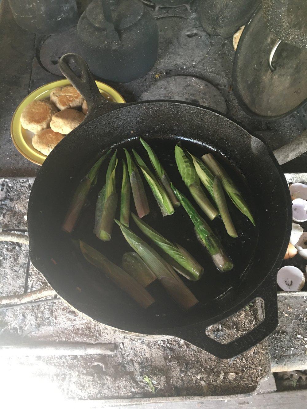 Hosta shoots frying
