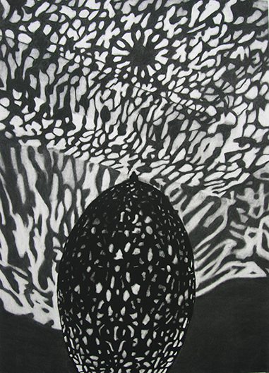 Lantern #4 by Kathryn Ryan