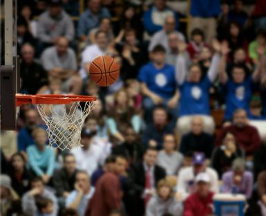 iStock_000004657205XSmall basketball.jpg