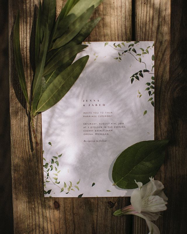 We can't describe what a treat it was to work with Ann of @bash.event.planning last weekend! It is SO worth it to have a planner you guys. Everything runs smoothly, is gorgeous, we can focus on the photos, and most importantly - you can focus on getting married! Win win win win! (Gorgeous florals by @_meg_bean 🌿) #basheventplanning #beanandcole #lifestyleweddingphotography #michiganwedding
