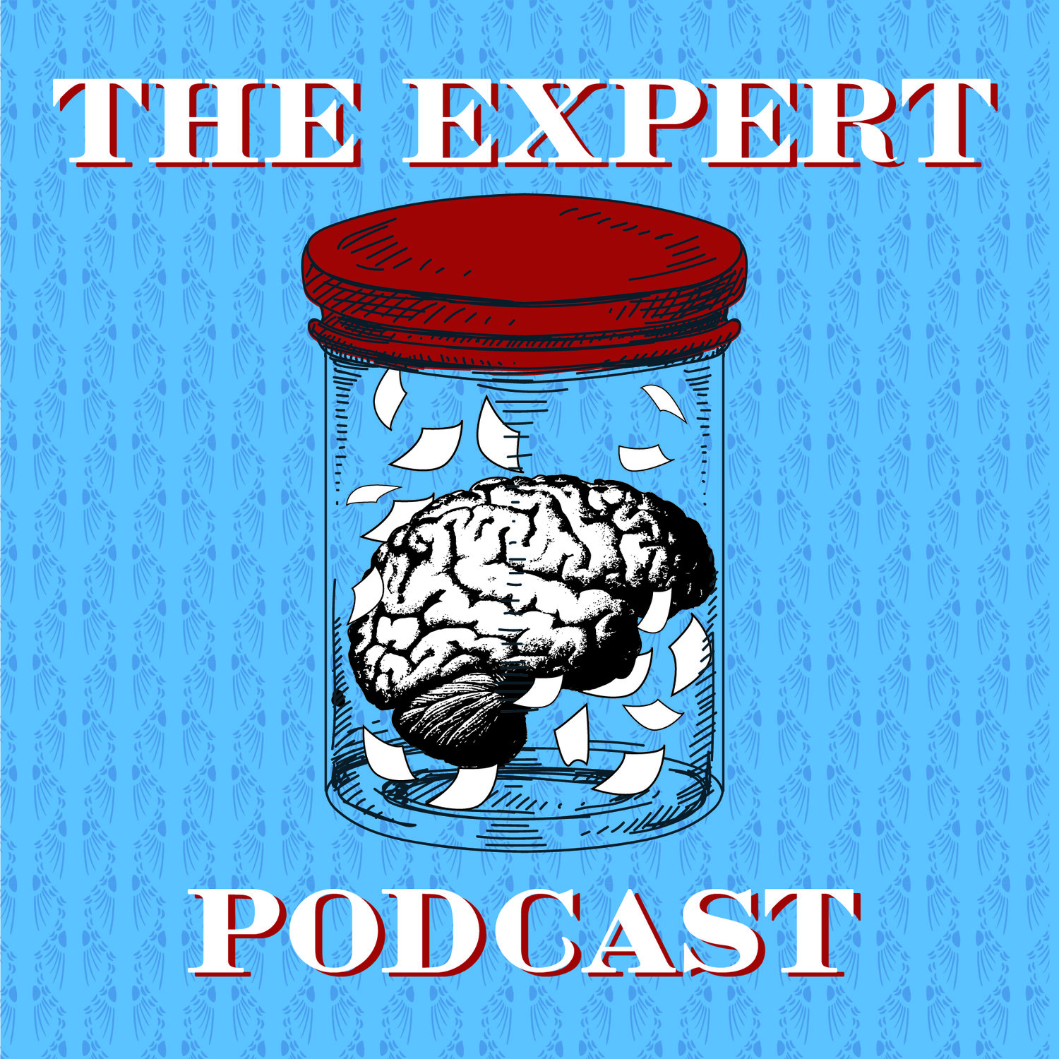 The Expert Podcast