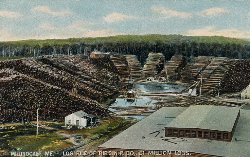 Log pile (estimated to be 21 million logs) of the Great Northern Paper Company, Millinocket, ME; from a 1908 postcard. Logging could be in store on unprotected lands.  Credit Wikimedia Commons.