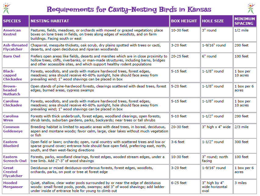 Nesting Box Requirements Handout.PNG