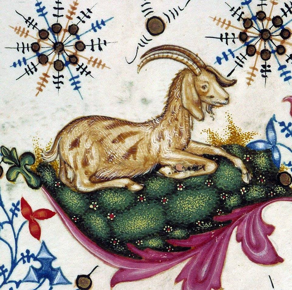 Aries the Ram, from Breviary of Mary of Savoy, Lombardy ca. 1430 Chambéry, Bibliothèque municipale, ms. 4, fol. 443r Retrieved from:  https://www.facebook.com/photo.php?fbid=10153752911010337&set=a.10153728147595337&type=3&theater