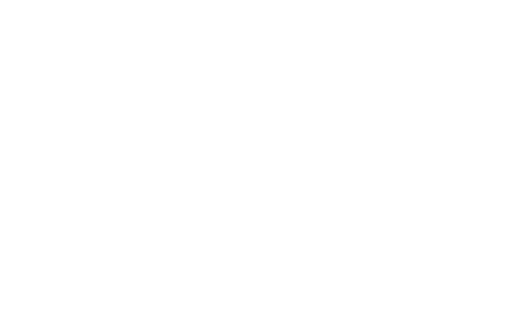 FH Groups Logo White.png