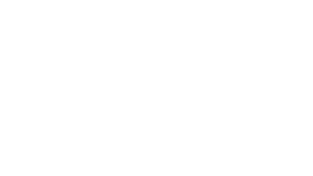 FH McCall Logo Wite.png