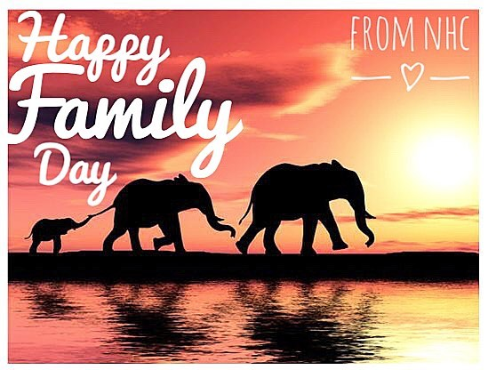 Happy Family Day! 💞🌟 . . . We are closed today (Monday February 18th) in celebration of the ones we love and call family. 🤗💗 . . . We will be open 9AM tomorrow (Tuesday February 19th) kickstarting with a Find Your Flow class lead by Joanna at 9:15AM. 🙌 🌊 . . . We hope you all have a safe and happy holiday! 😊💖 . . . . . . @naturalhealingcentre #familyday #monday #family #friends #yogastudio #toronto #donmills #findyourinnerpeace #mindbodysoul #shopsatdonmills #pilates #pilatestoronto #yogatoronto #meditationtoronto #taichitoronto #crystals #books #homeopathy