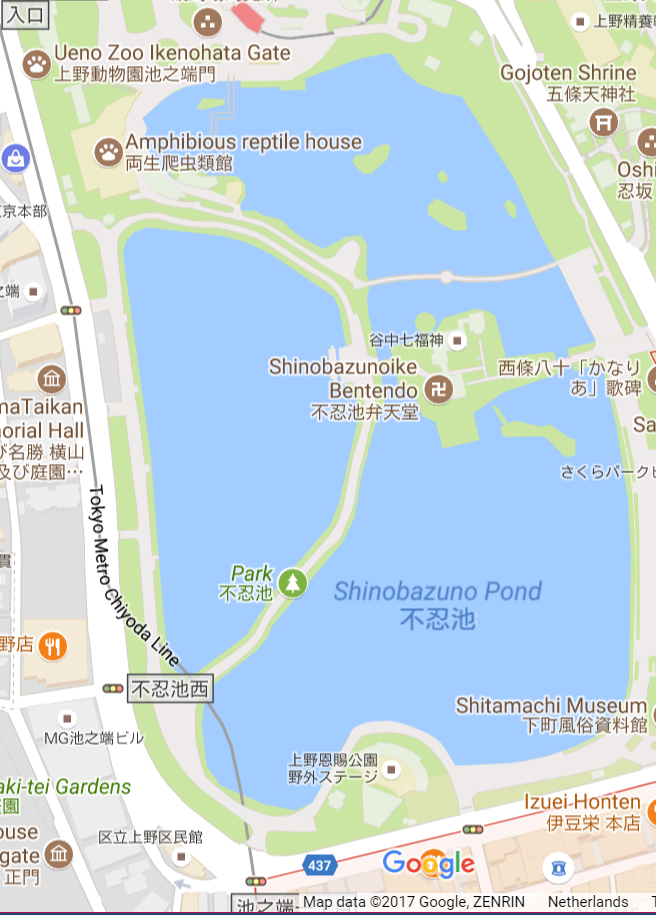 shinobazu pond.png
