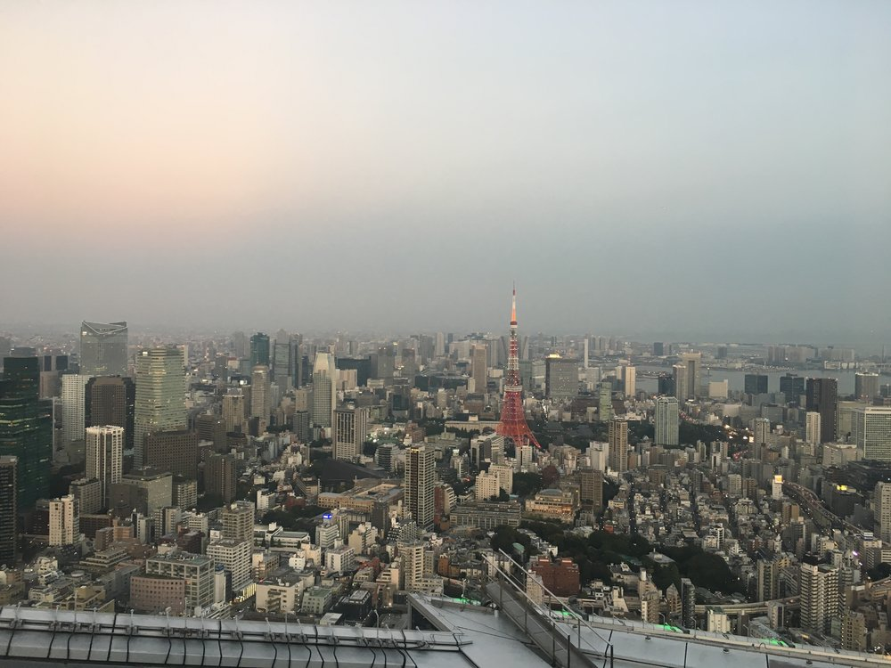 tokyo skyline1.jpg