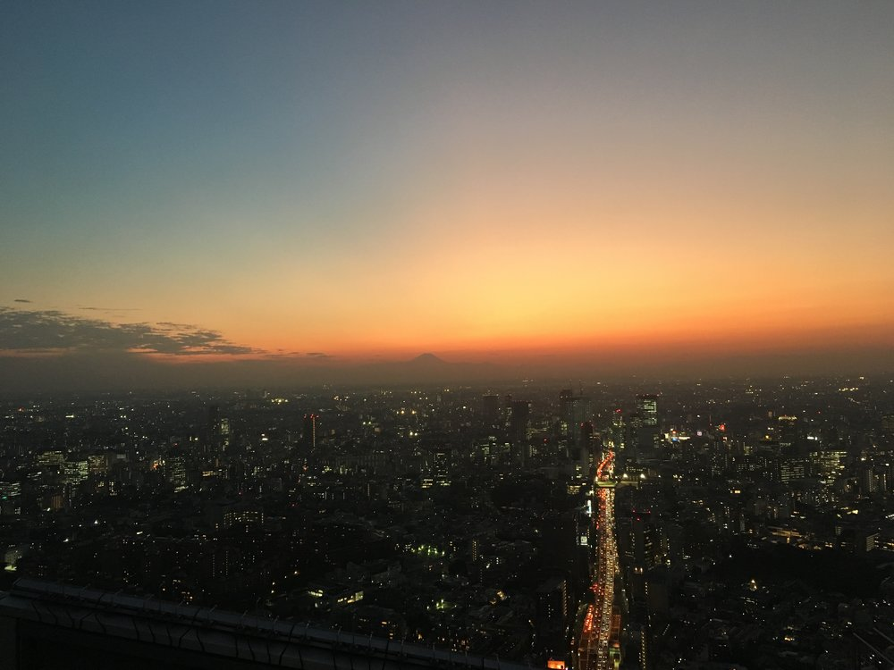 tokyo skyline 2.jpg