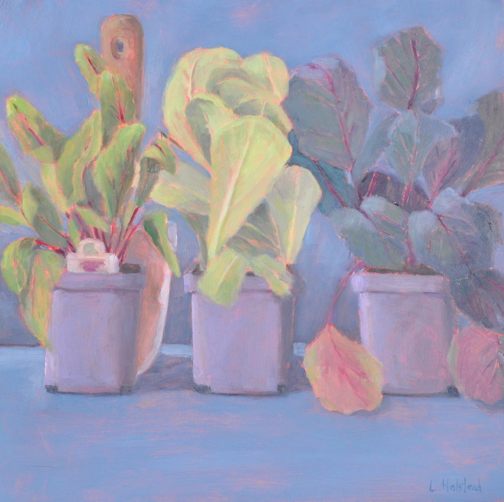 Spring Greens, Oil on Panel, 12 x 12, Available