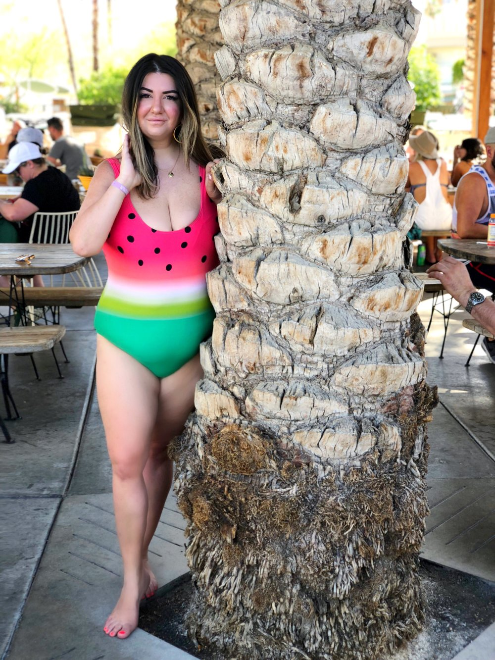 Palm Springs Vacation Guide.JPG