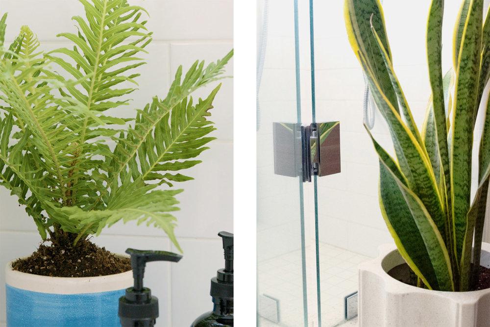 bathroom-plants-mosaic-1.jpg