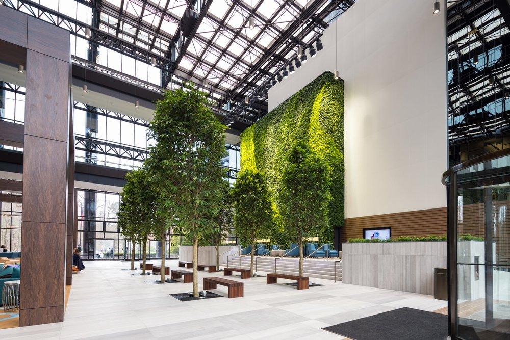 Green Wall and Benches.jpg