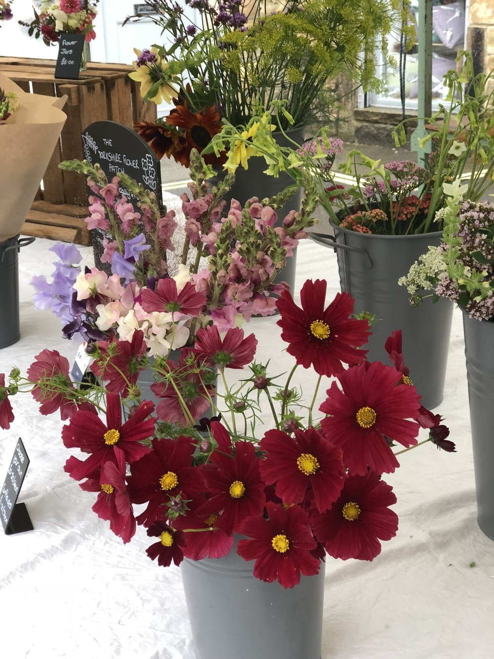 during our main cutting season, april to october, you can often find us at local markets with a large selection of our beautiful flowers. keep an eye on our social media pages to find out where we will be next. -