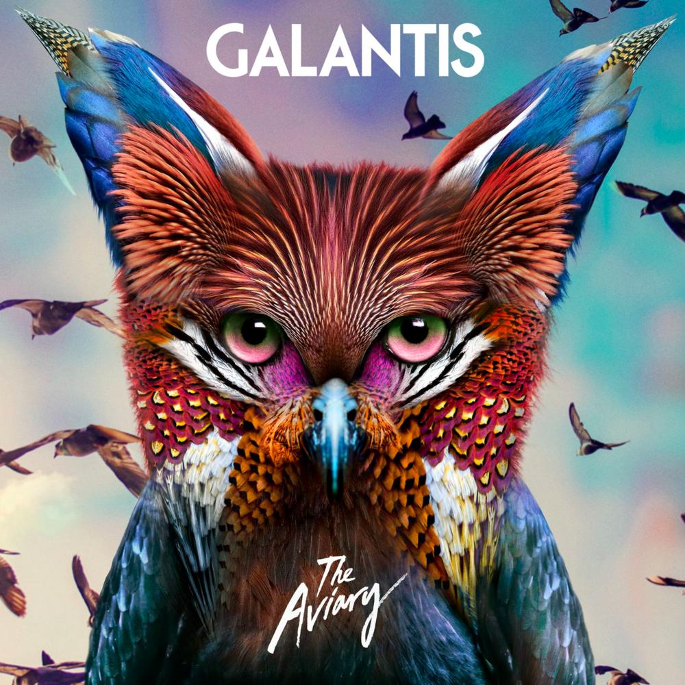 Salvage - Galantis.png