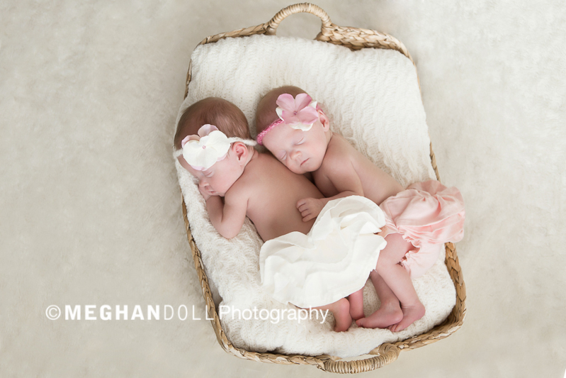 two babies in a basket