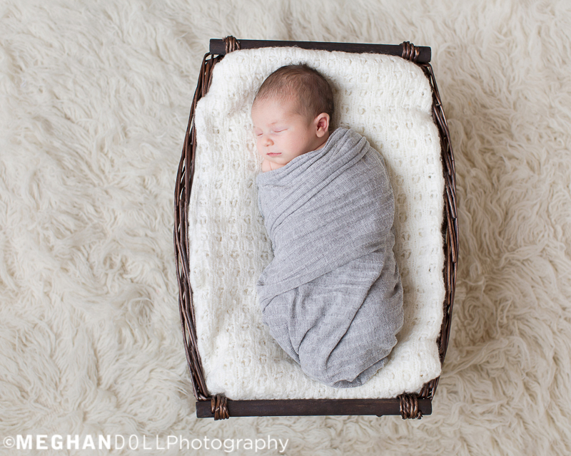 baby_girl_rests_in_neutral_basket_in_gray