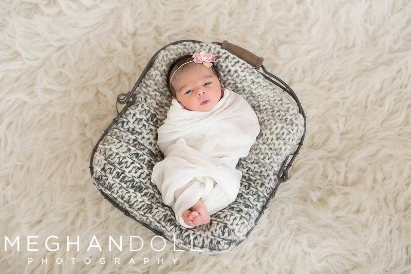 newborn-baby-girl-with-pink-headband-says-hello-in-wire-basket