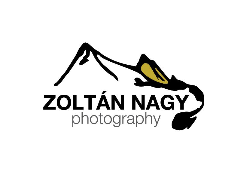 logo zoltan nagy22-.jpg